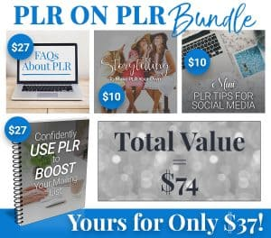 PLR on PLR Bundle